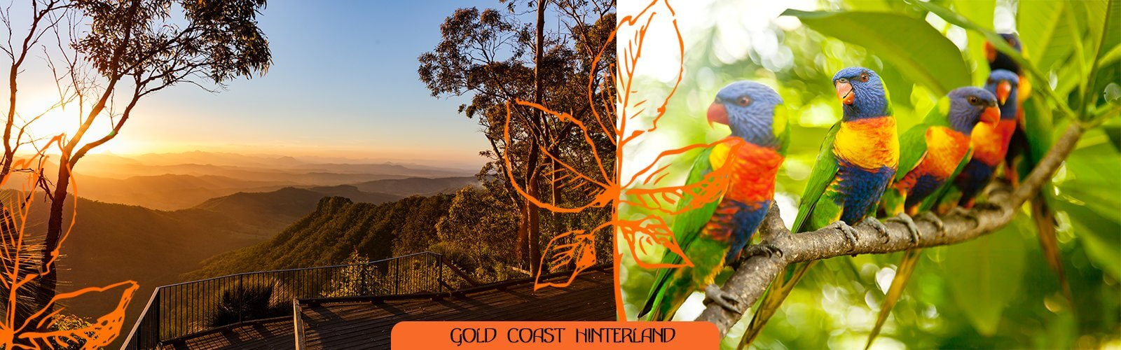 The Gold Coast hinterland, This undefined unit of area is known for its tourist attractions including resorts, rainforest, lookouts, national parks, its diversity of fauna and flora and as a green backdrop to the coastal strip.